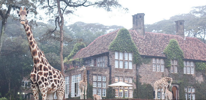 Unique Hotels – Kenya