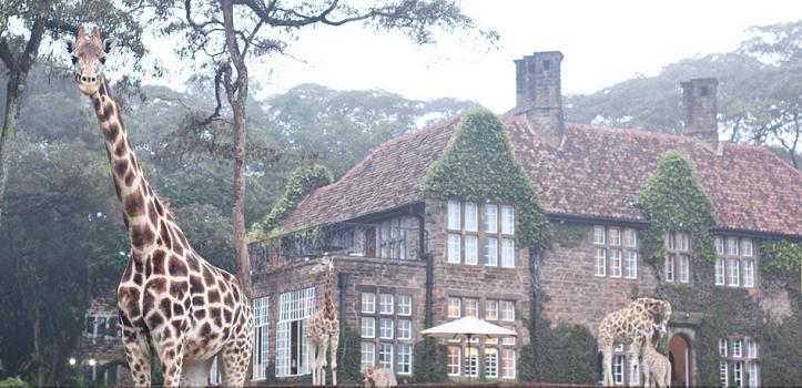Unique Hotels – Kenya