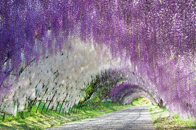 Interesting Places – Japan